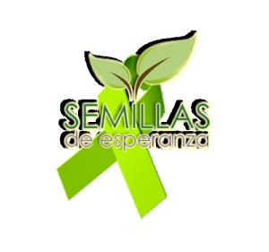 Montaje lazo verde-semillas[1]